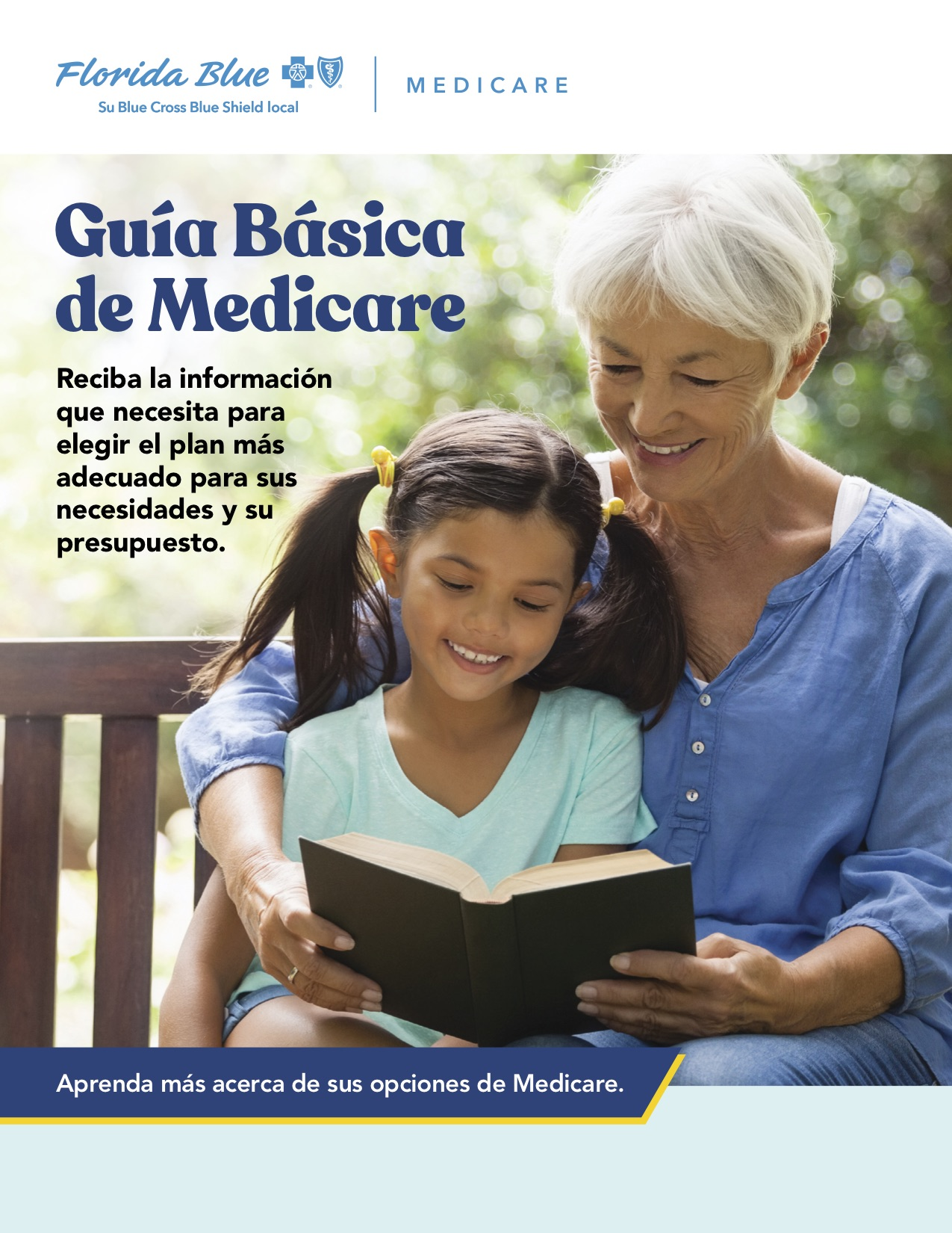 Florida Blue Medicare Basics Guide