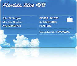 Members Individual And Families Florida Blue